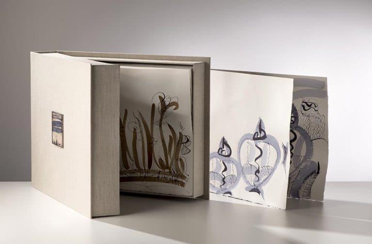 Livre-Artiste-Catherine-Vanier-2012-02