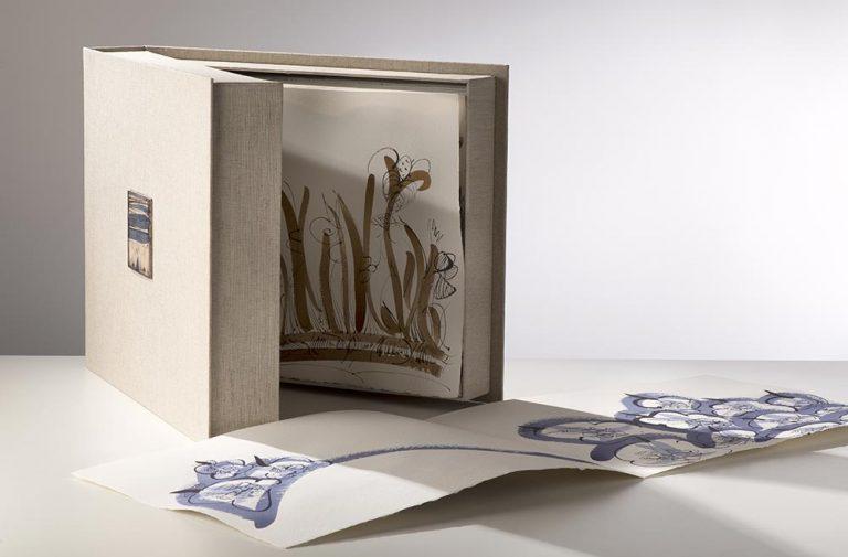 Livre-Artiste-Catherine-Vanier-2012-03